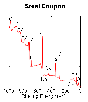 Steep Coupon Analysis